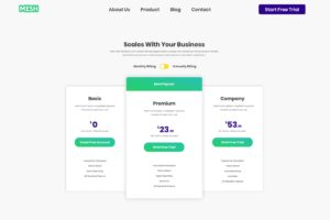 Pricing Table - Website Builder Services