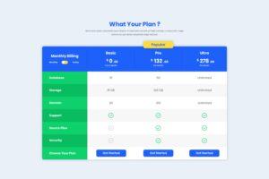 Pricing Table - Website Server Package