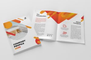Company Profile - Management Finance