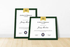 Certificate - Brand Achievements