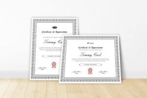 Certificate - Company Appreciation