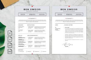 CV Resume - Business Planner Profile