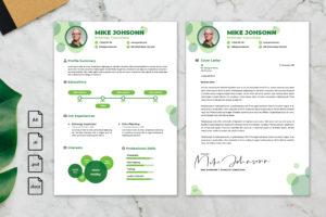 CV Resume - Echology Consultant profile