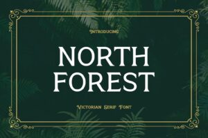fonts north forest serif