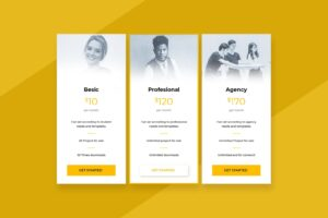 pricing table professional job market